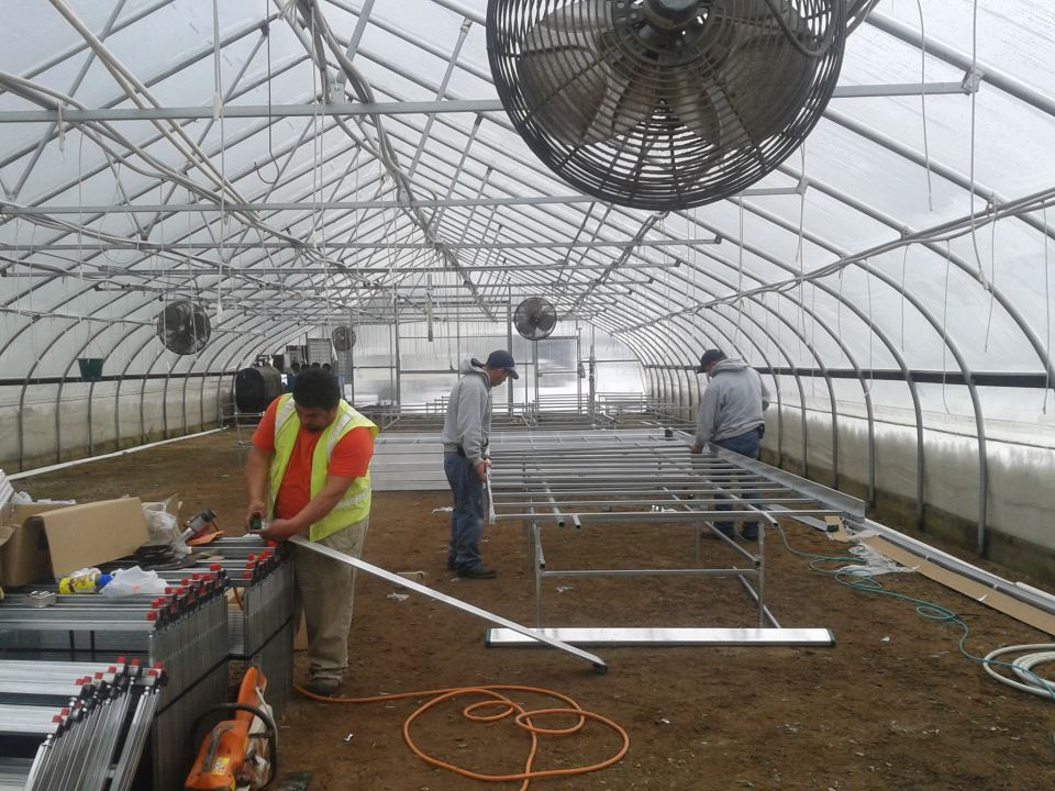 we have been upgrading our greenhouse growing systems. We're building a new Ebb n' Flow flood benching system that will conserve a significant amount of water and fertilizer while growing healthier plants at the same time.