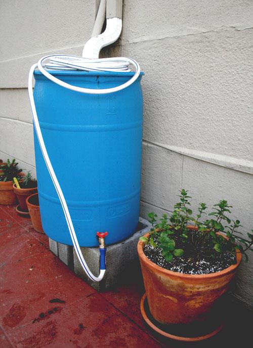 2-25-rainwater