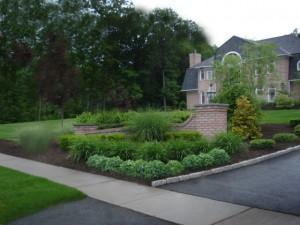Boxwood Garden and Shrubs