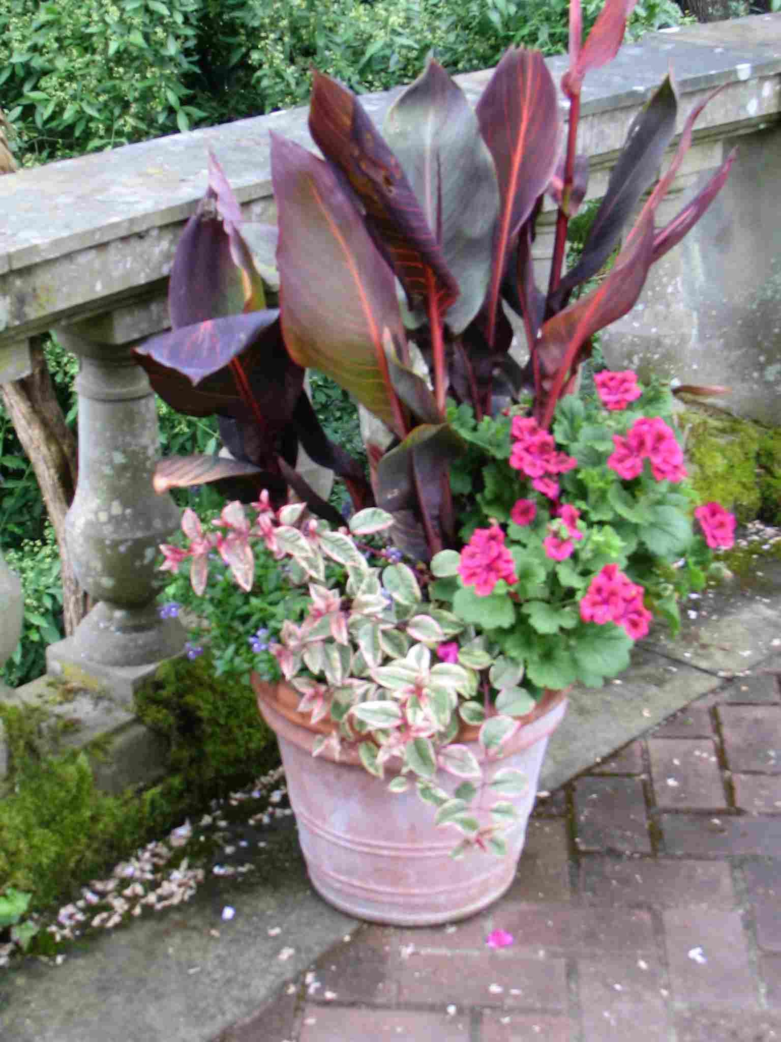 Ceramic Container Garden 2