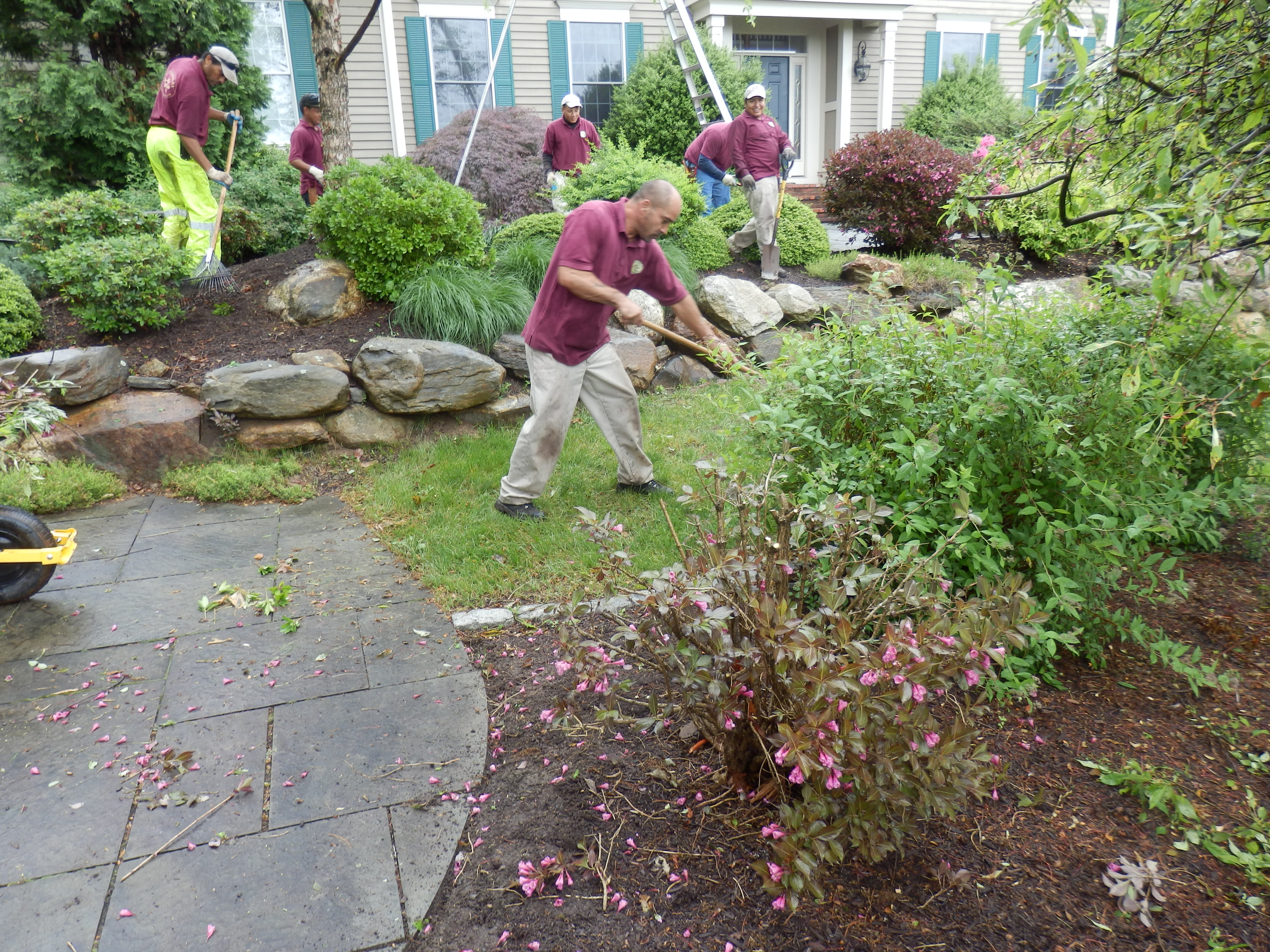 Residential landscaping lawn care winterberry gardens for Garden care maintenance