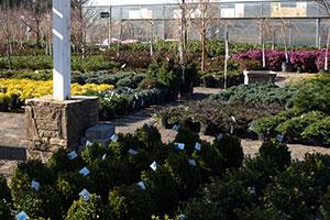 gardencenter-plantperks-1