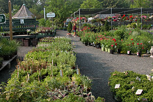 gardencenter-tour-1