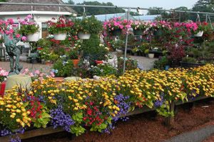 gardencenter-tour-2