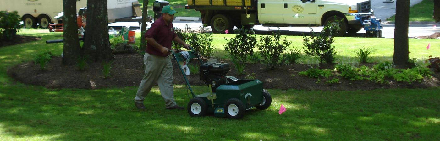 Lawn _maintenance