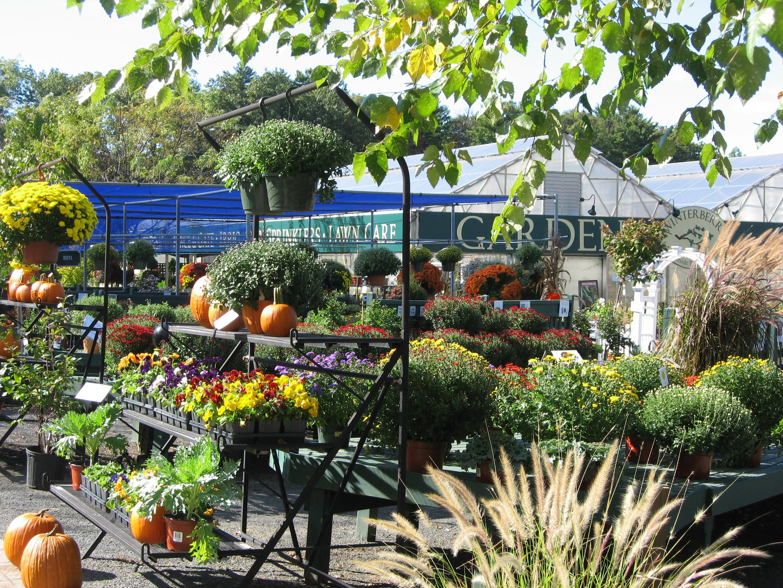 Exceptional Waynesboro Landscape And Garden Center Following Inspiration  Article
