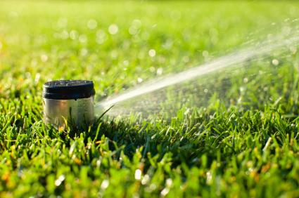 McDonough-GA-Irrigation-1