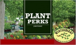 Plant-Perks-Graphic-no-words-300x178